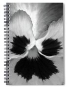 Pansy 09 Bw - Thoughts Of You Spiral Notebook