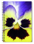 Pansy 09 - Thoughts Of You Spiral Notebook