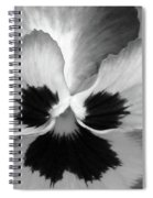 Pansy 10 Bw - Thoughts Of You Spiral Notebook