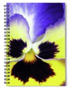 Pansy 10 - Thoughts Of You Spiral Notebook