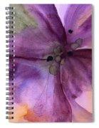 Pansy 3 Spiral Notebook
