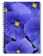 Pansy Profusion Spiral Notebook