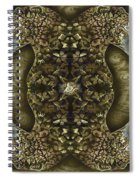 Panthers Spiral Notebook