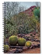 Papago And Barrels Spiral Notebook