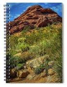 Papago Mountain Spiral Notebook