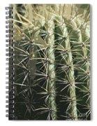 Paper Cactus Spiral Notebook