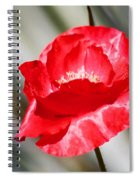 Paper Flower II Spiral Notebook