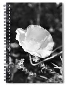 Paper Flower In B And W Spiral Notebook
