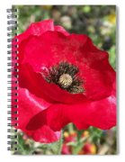Paper Flower Spiral Notebook