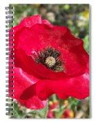 Paper Flower Spiral Notebook
