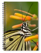 Paper Kite Butterfly With Orange Flower Spiral Notebook