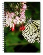 Paper Kite Spiral Notebook