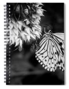 Paper Kite In Black And White Spiral Notebook