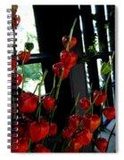 Paper Lantern Plant Spiral Notebook