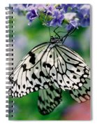 Paper Rice Butterfly Spiral Notebook