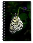 Paperwhite Butterfly Spiral Notebook
