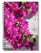 Papery Pink Riot Spiral Notebook