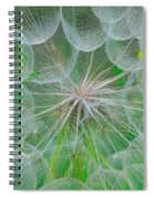 Parachutes For Seeds Spiral Notebook