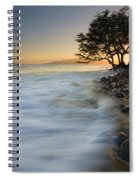 Paradise Gold Spiral Notebook
