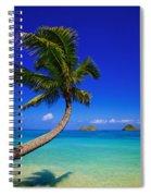 Paradise Palm Over Lanikai Spiral Notebook