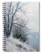 Paradise Point Bridge Winter Spiral Notebook
