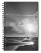 Paradise Walk Spiral Notebook