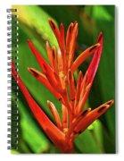 Parakeet Flower Exotic Spiral Notebook