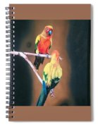 Parakeet  Spiral Notebook