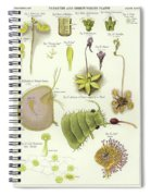Parasites And Insectivorous Plants Spiral Notebook