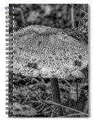 Parasol Mushroom #h2 Spiral Notebook