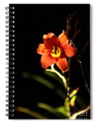 Pardon Me At Night Spiral Notebook