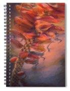 Parfait  Spiral Notebook