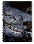 Paris Gallery Of Paleontology 2 Spiral Notebook
