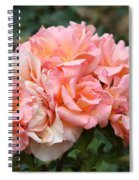 Paris Garden Roses Spiral Notebook