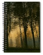 In The Park . Spiral Notebook