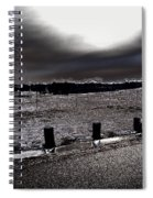 Park In The Moonlight Spiral Notebook