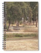 Park Near The Source Of The Yarkon River Spiral Notebook