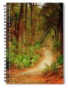 Park Path  Spiral Notebook