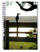 Park Roadrunner Spiral Notebook