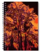 Parking Lot Palms 1 11 Spiral Notebook