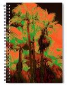 Parking Lot Palms 1 6 Spiral Notebook