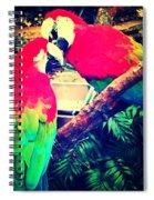 Parrot Couple Spiral Notebook