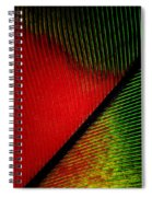 Parrot Feather Macro Spiral Notebook