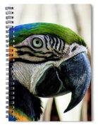Parrot Head Spiral Notebook