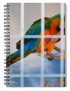 Parrot In A Cage Spiral Notebook
