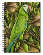 Parrot In Brazil Nut Tree Spiral Notebook