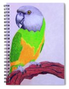 Parrot Portrait Spiral Notebook