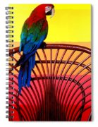 Parrot Sitting On Chair Spiral Notebook