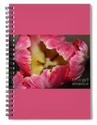 Parrot Tulip Spiral Notebook
