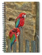 Parrots, Doue-la-fontaine Zoo, Loire, France Spiral Notebook